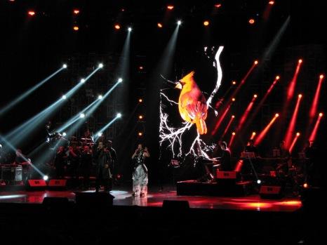 Hồng Nhung, Hà Anh Tuấn, Café-in-Concert, Nâu nóng