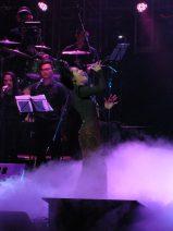 Phương Linh, Café-in-Concert, Nâu nóng